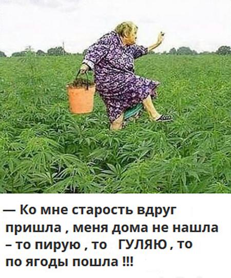 шуточные картинки меня дома старость не застанет оренбургской области это