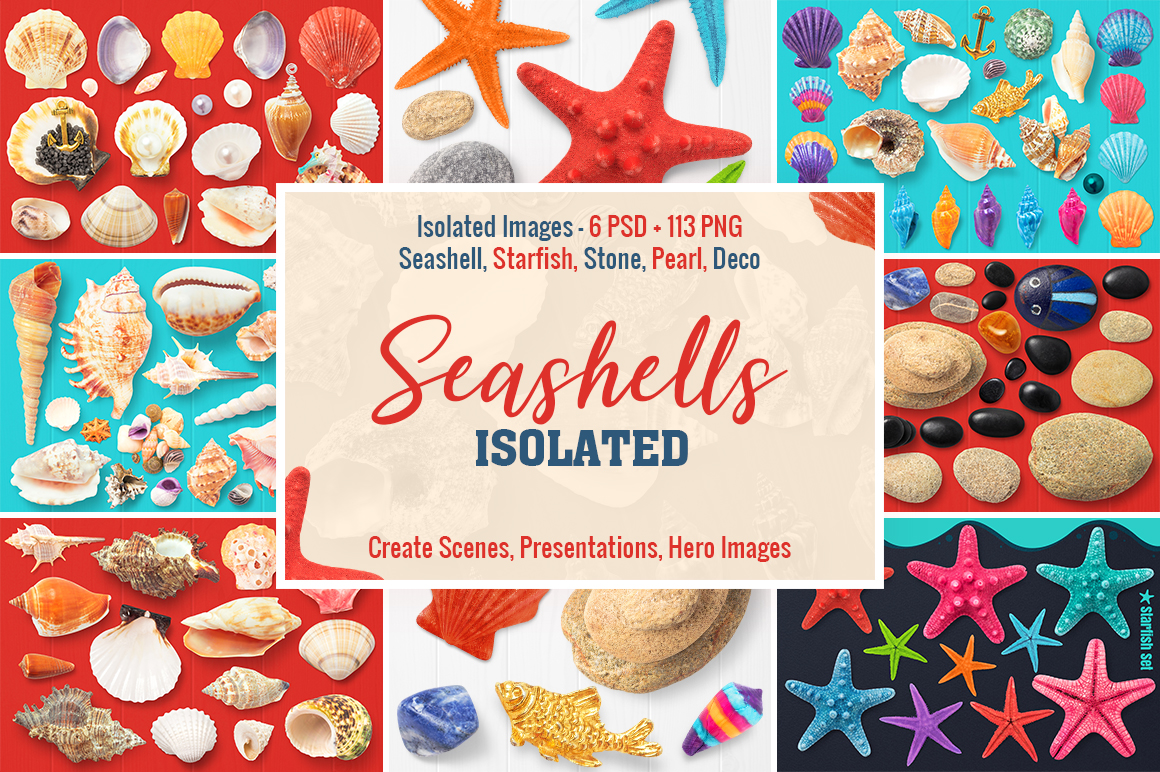 1 Isolated Seashells & Stones Preview 1.jpg