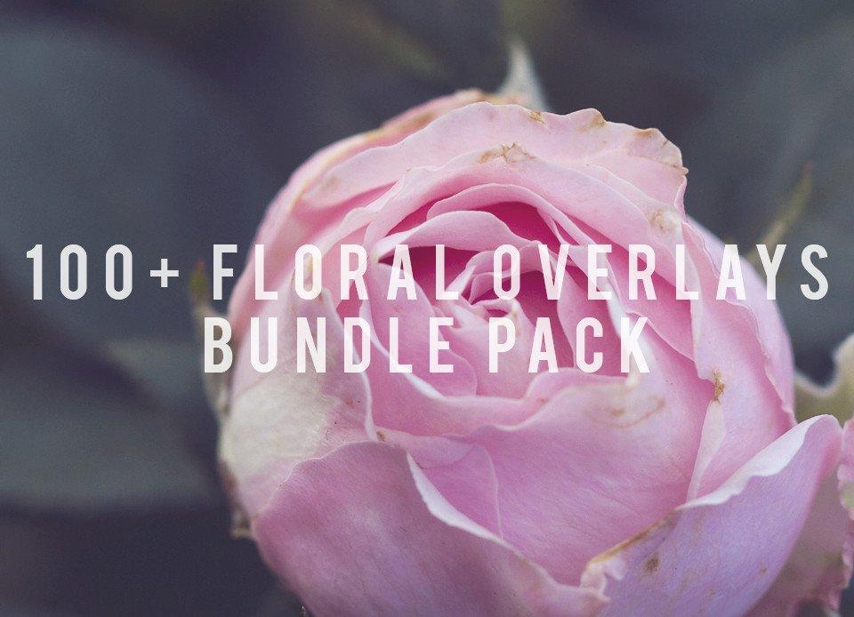 100_-Floral-Overlays-Bundle-Pack_fb4abe88-d0e6-4767-86a9-473f25141e1f_1024x1024.jpg
