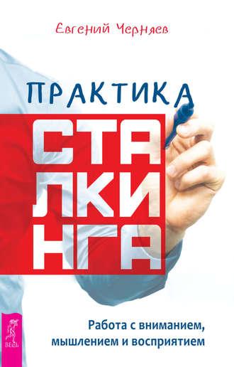42722317-evgeniy-chernyaev-praktika-stalkinga-rabota-s-vnimaniem-myshleniem-i-vospr.jpg