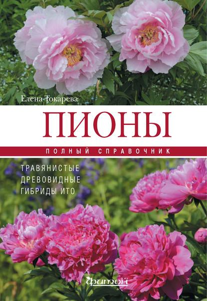 55333363-e-a-tokareva-piony-travyanistye-drevovidnye-gibridy-ito-55333363.jpg