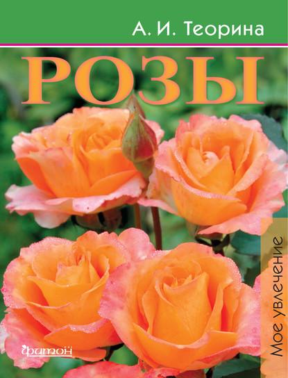 55333451-aleksandra-teorina-rozy-55333451.jpg