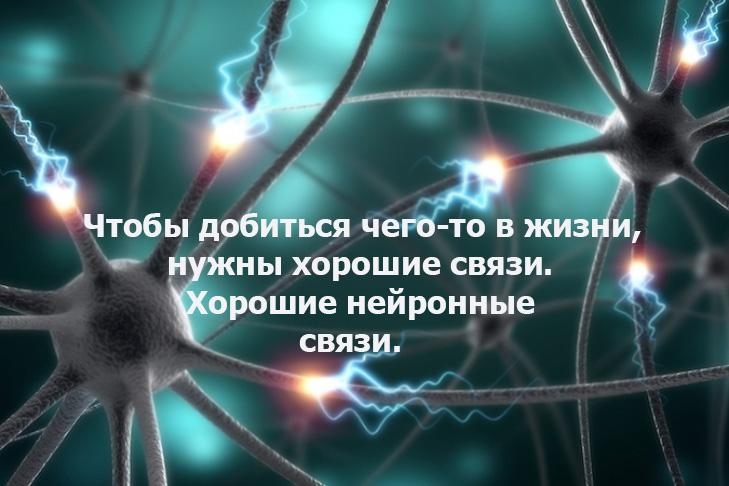 729_486_58998c50c3cbe.jpg