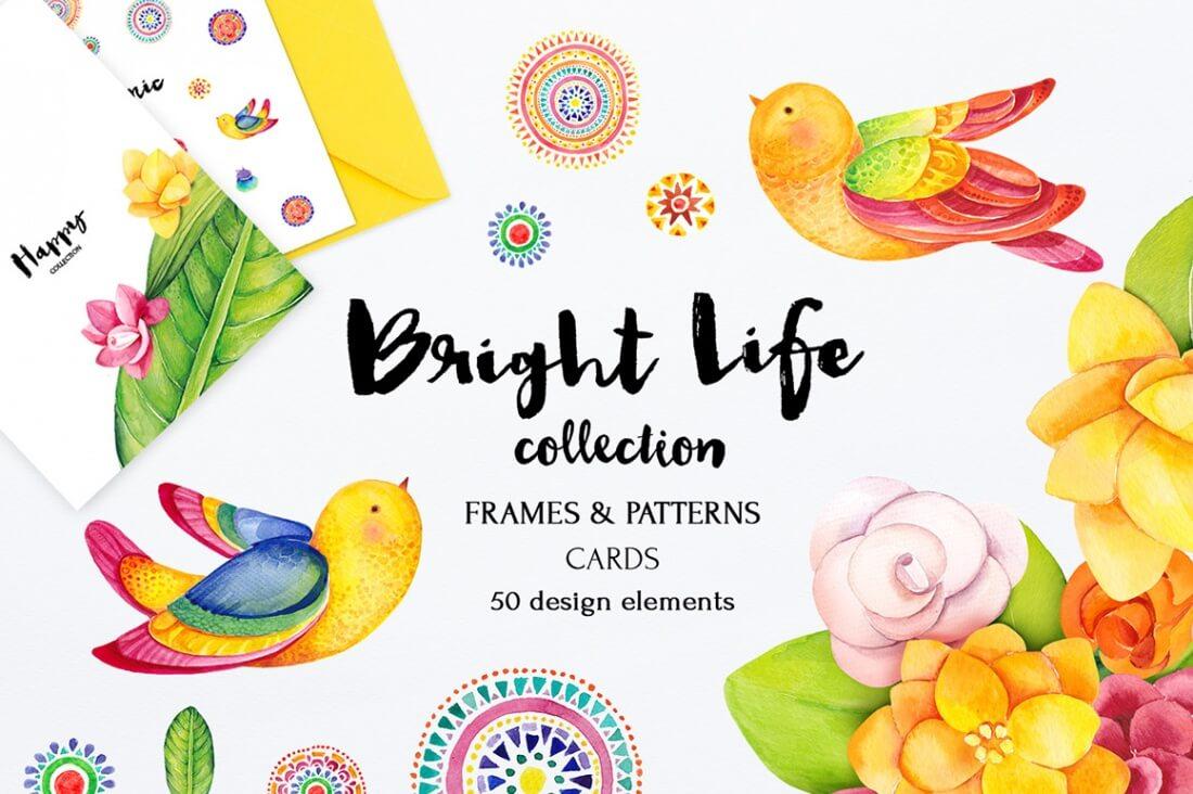 brightlife_1_preview_1.jpg