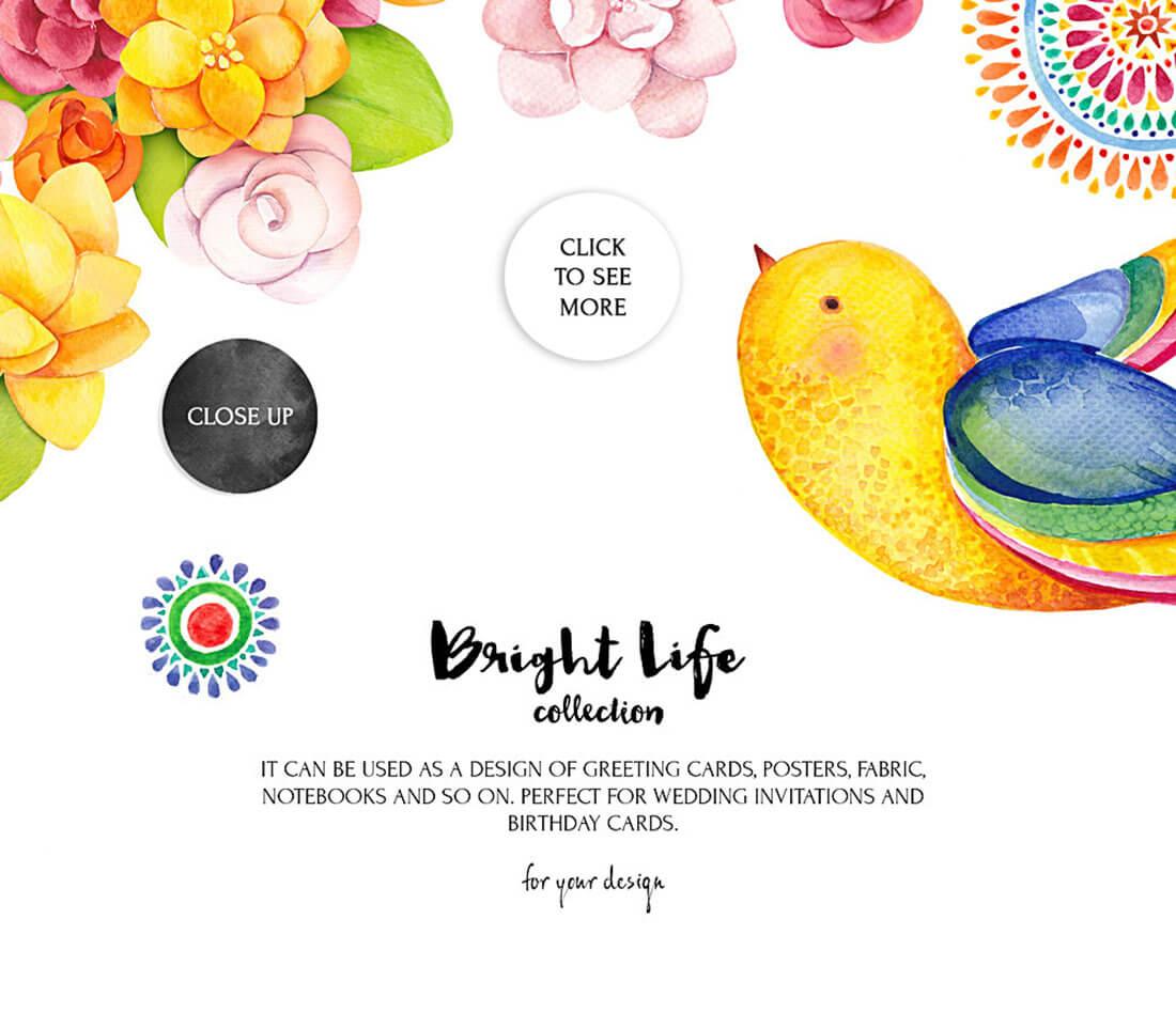 brightlife_5_preview.jpg
