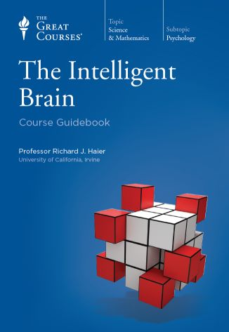 Intelligent brain.jpg