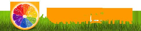 logo_simplft.png