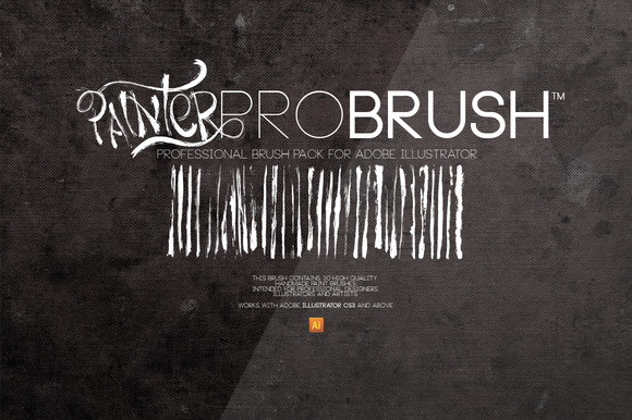 painterprobrush-cover-f.jpg
