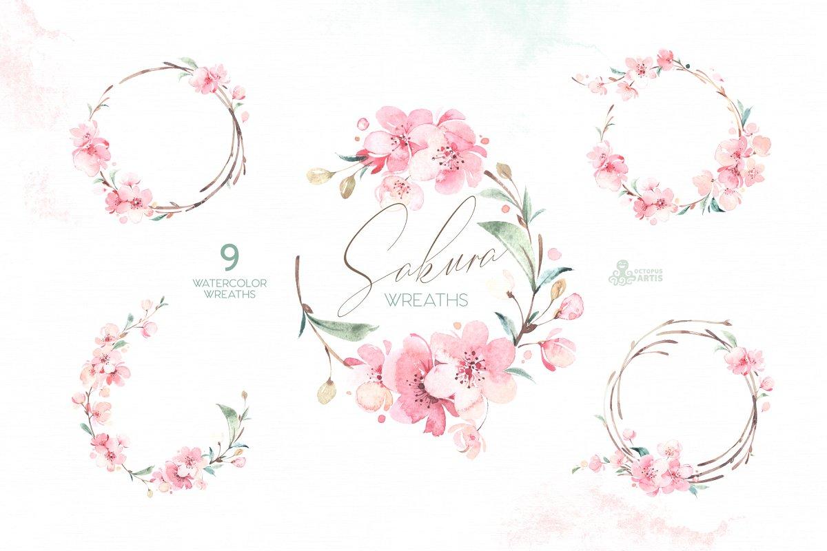 sakura_cm_02-.jpg