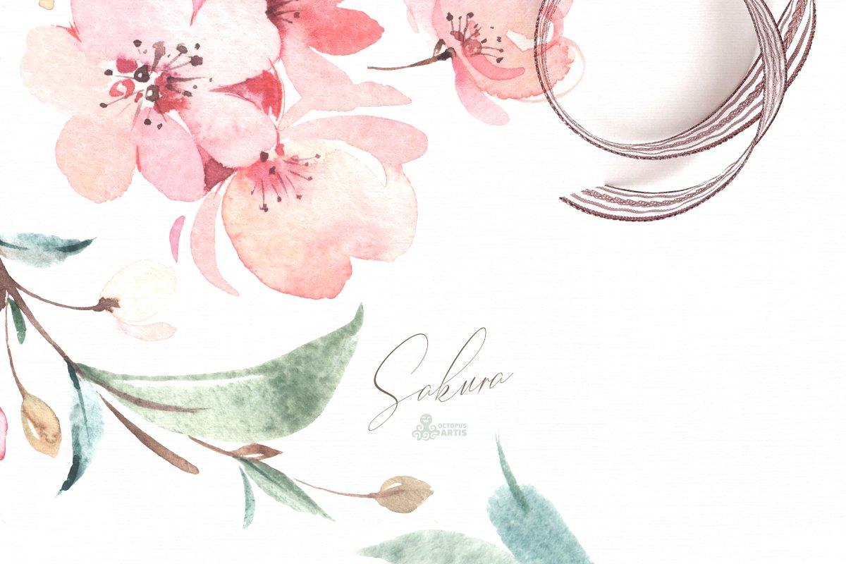 sakura_cm_16-.jpg