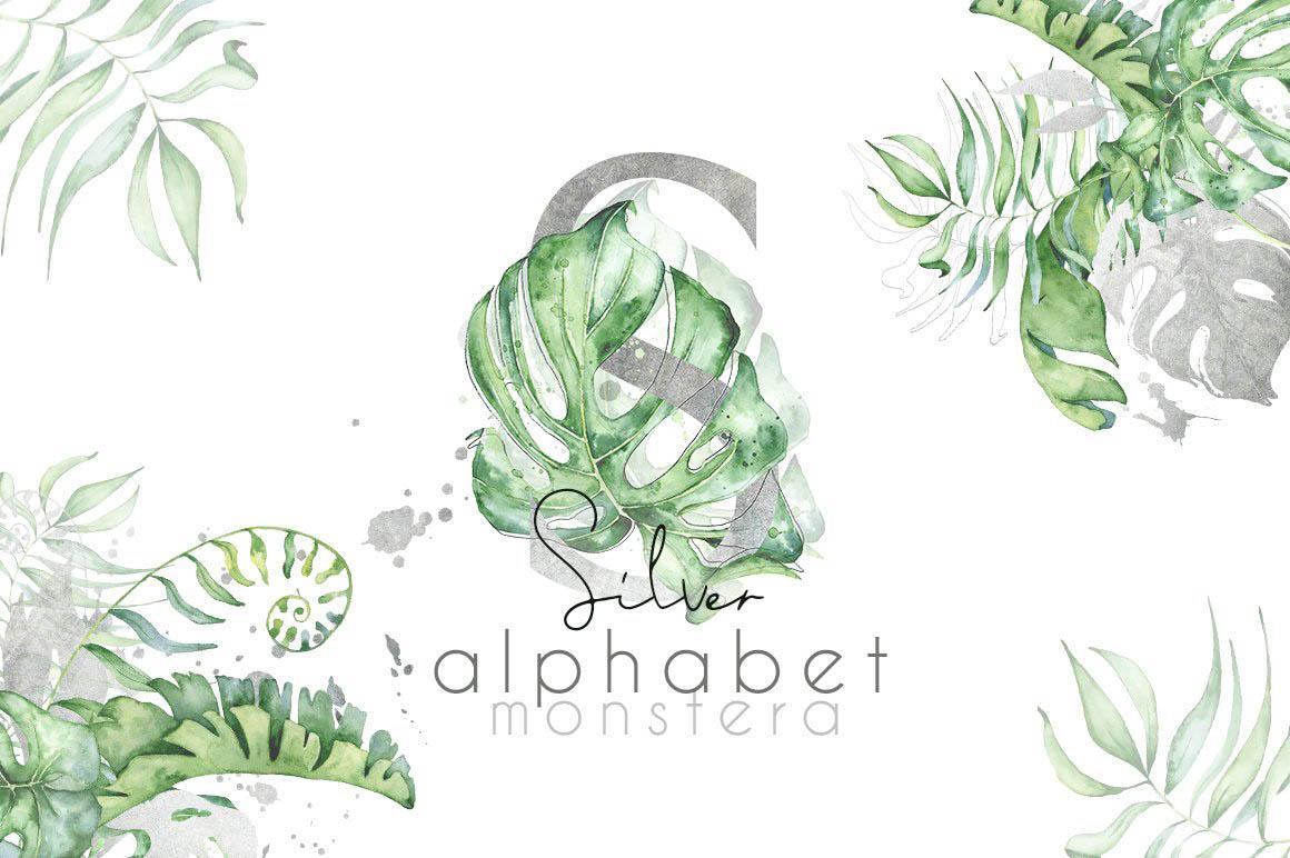 Silver_Monstera_tropical_alphabet_01.jpg