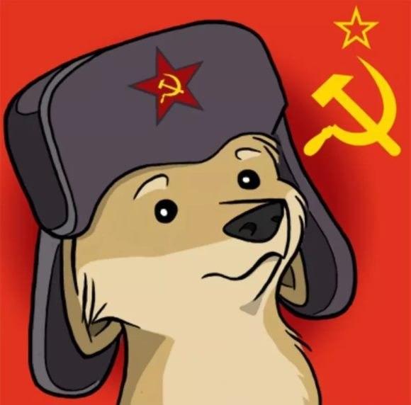 Собака СССР.jpg