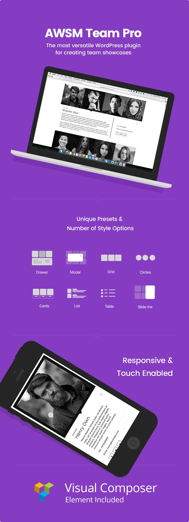 team-wordpress-plugin-cc-display.png