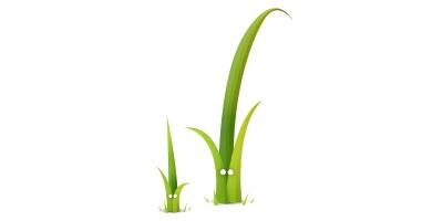twig (1).jpg