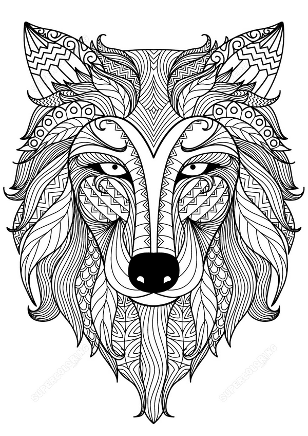wolf-zentangle-coloring-page copy.png