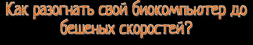 zagolovok1.png