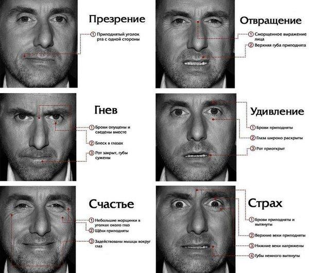 Язык тела в иллюстрациях от Duran (5 шт) | 531x604